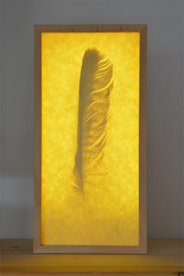Reliquienkasten mit Feder des Dummlings, beleuchtet