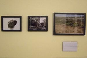 Schwarzer Schimmel 3, mehr Islandfotos