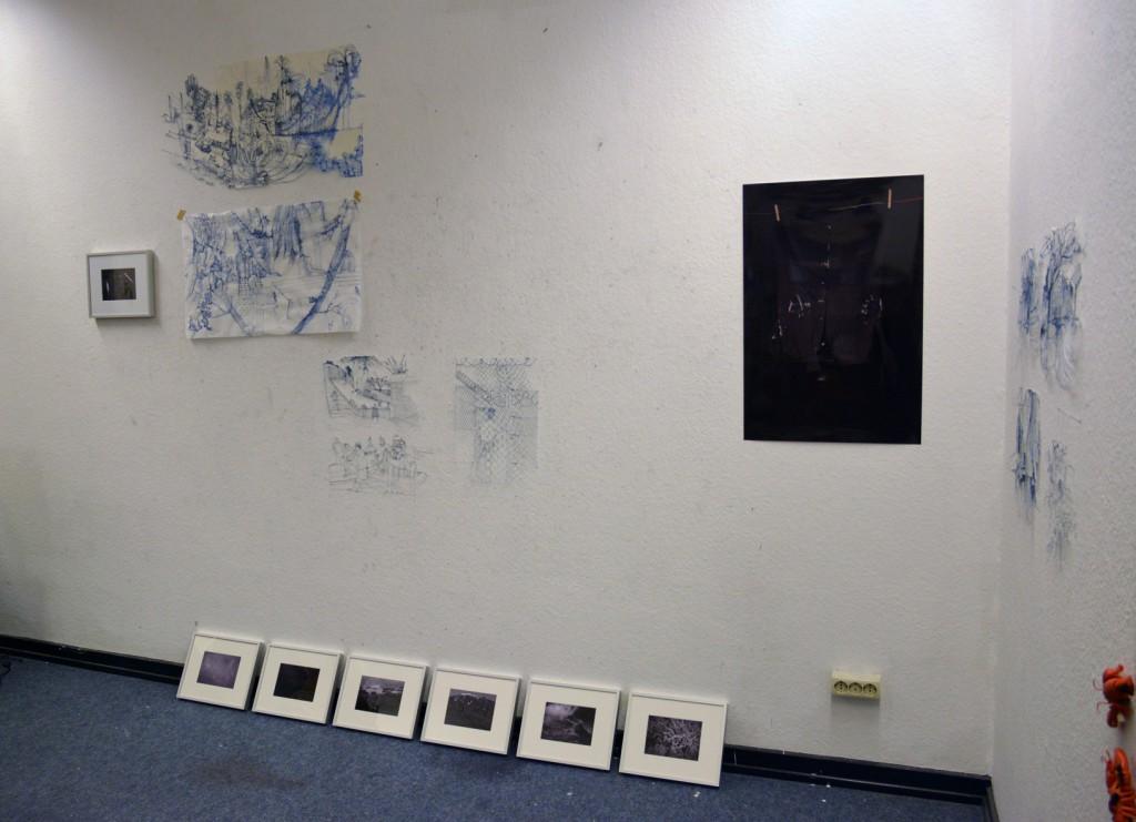 Ausstellung Schwarzer Schimmel 17, Gesamtansicht