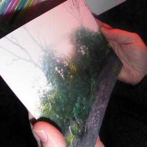 EVA: Foto zum Stichwort Selbst als Rhododentron