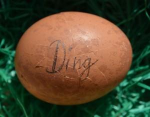 Gekochtes ei mit Aufschrift Ding