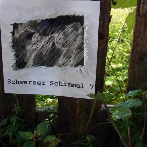 7. Schwaschi Ausstellung