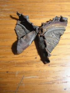 Verrosteter, auseinandergebrochener Kronkorken, zusammengelegt in Form eines Falters