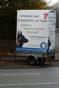 Foto einer Werbung für Schimmelbekämpfung mittels eines Spürhundes