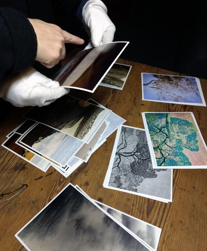 Neue geplante Fotosereien von Sabine Höpfner.