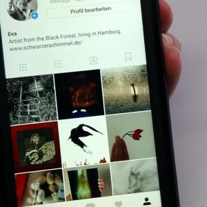 Foto von EVAs Handy mit ihrer Instagram Seite