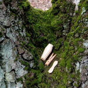 Gegenstaende in der moosbewachsenen Mulde eines Doppelbaumes