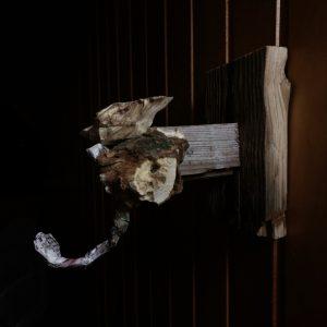 Vn Sandra Schießl mitgebracht: Elefantenähnliches Holzgebilde an der Bretterwand eines Gartenhäuschens.