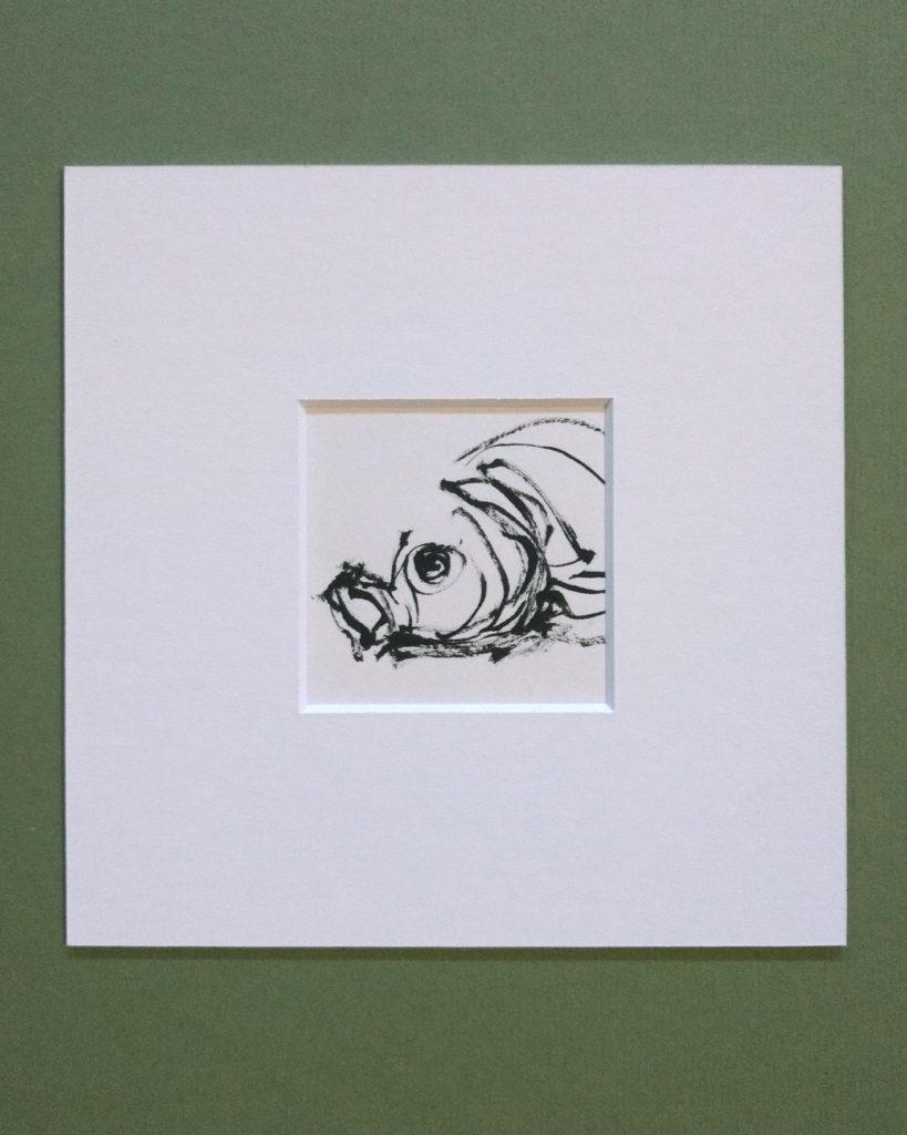 Tuschnzeichnung Fischkopf von der Hamburger Künstlerin EVA