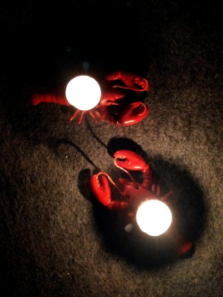 EVA zeigt Aufziehkrebse mit brennenden Kerzen auf dem Plastikrücken