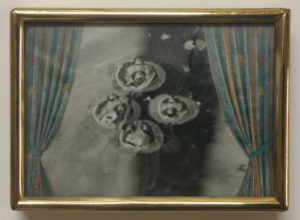 Krötenball, eine Collage der Hamburger Künstlerin EVA