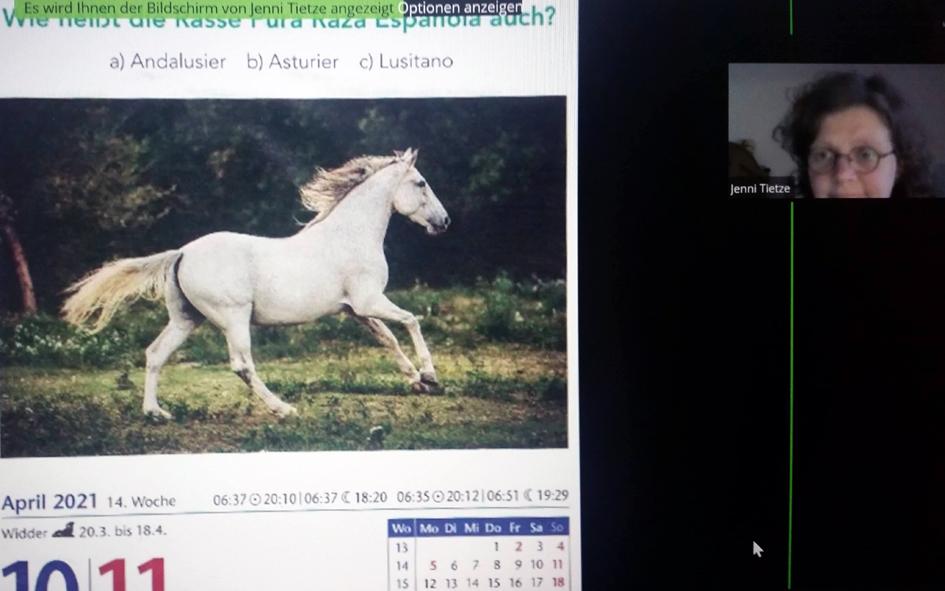 Kalenderbild mit weißem Pferd vom 12. April 2021